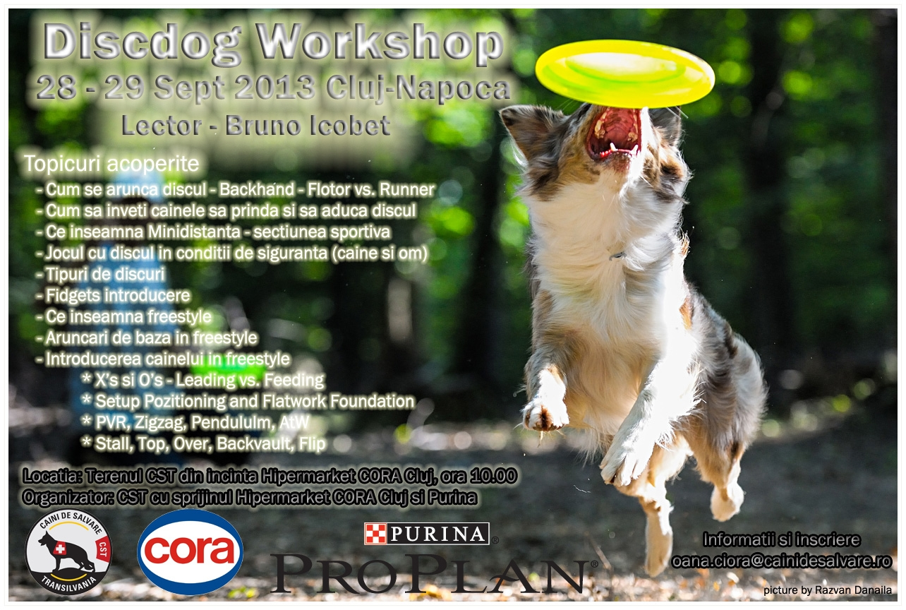 Discdog Workshop 2013